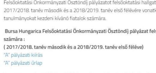 Bursakép