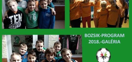 Bozsik program